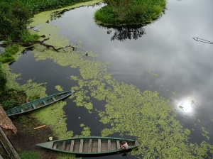 Victor Lake