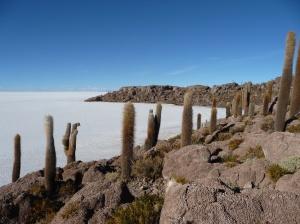 Incahuasi Island