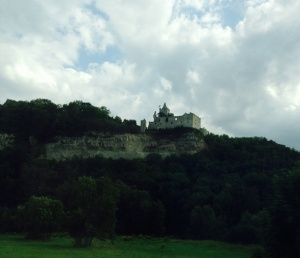 A castle or two in the distance of the train!